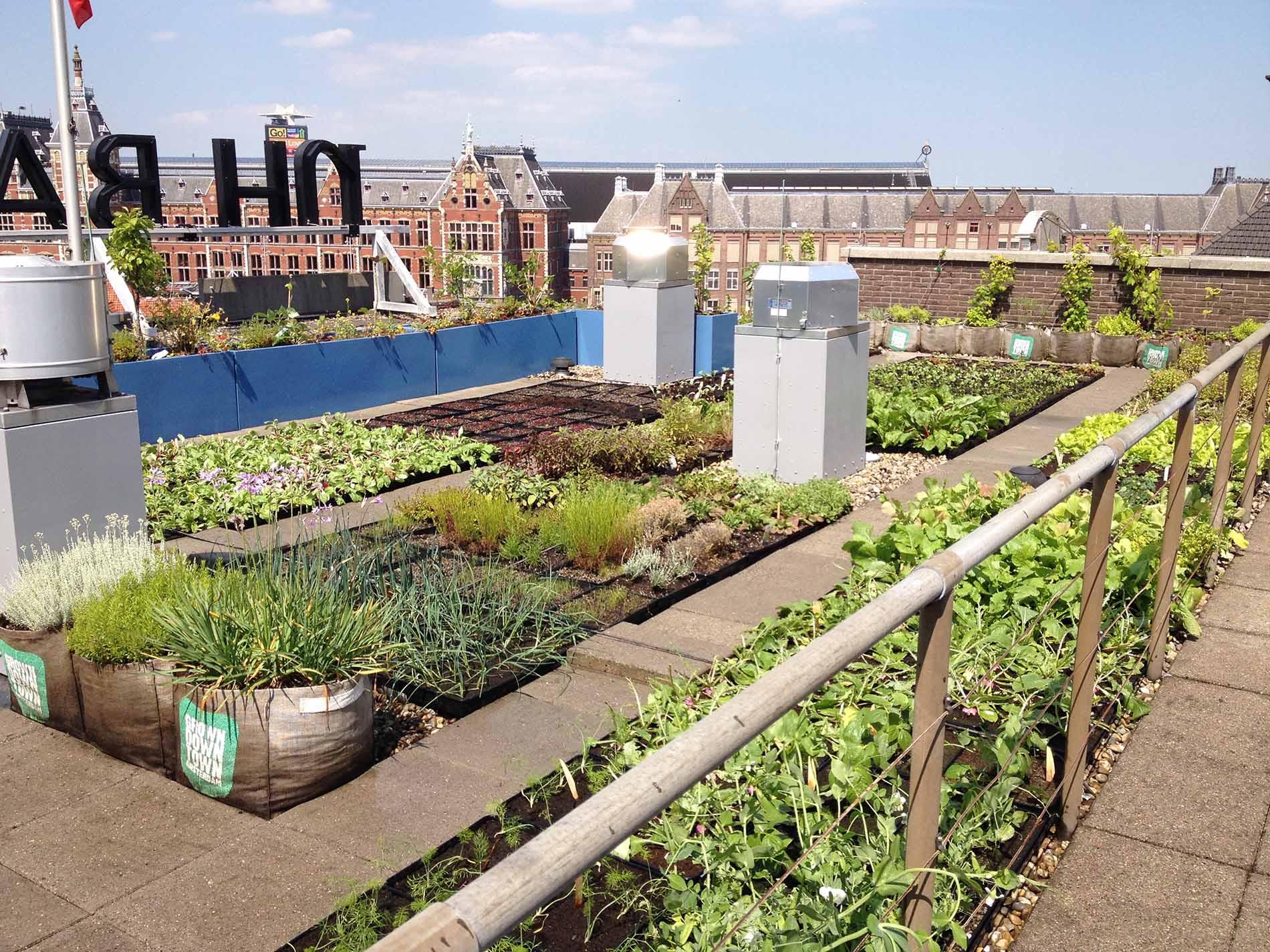 Jongkind substrates urban substraten - Daken en volumes ...